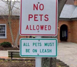The Pet Paradox
