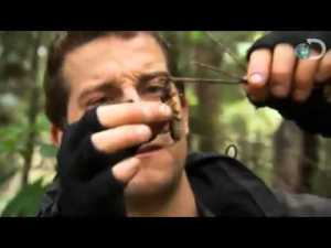 "Bear Grylls eating ""who knows what."""