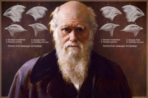 Charles Darwin: Author of The Origin of Species and impetus for the Theory of Evolution